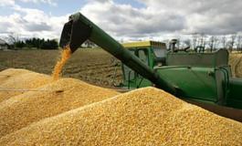El sector productivo da 72 horas al Gobierno para autorizar la libre exportación de soya