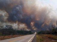 Bolivia y Paraguay unen esfuerzos para apagar incendio forestal