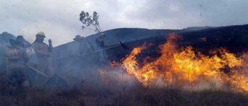 Policía moviliza 100 bomberos y peritos al Parque Madidi por incendios