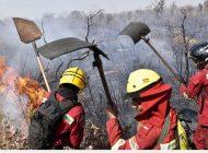 Mueren 3 bomberos que combatían los incendios en Concepción