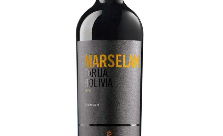 Marselan: un producto nacido de la innovación de Campos de Solana