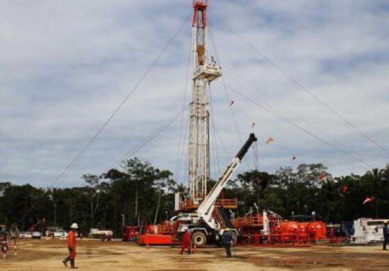 YPFB trabajará en 20 proyectos de exploración y estima una inversión superior a $US 400 MM