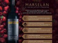 El secreto para maridar el vino Marsela