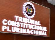 Sentencia del TCP vuelve a poner en entredicho la constitucionalidad de la sucesión de Añez