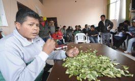 Cocaleros de La Paz crean su partido político
