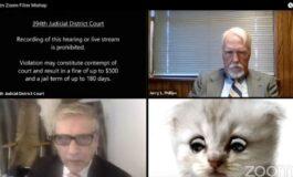Por un filtro, un abogado aparece con cara de gato en una audiencia clave vía Zoom