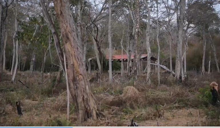 Hallan comunidades fantasma y asentamientos en áreas protegidas de Santa Cruz