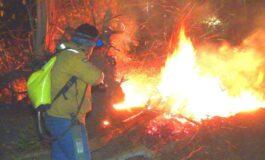 Indígenas de Concepción se declaran en emergencia por incendios forestales